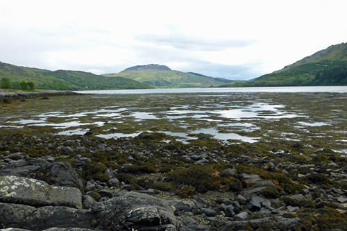 Loch Teacuis Northside Walk